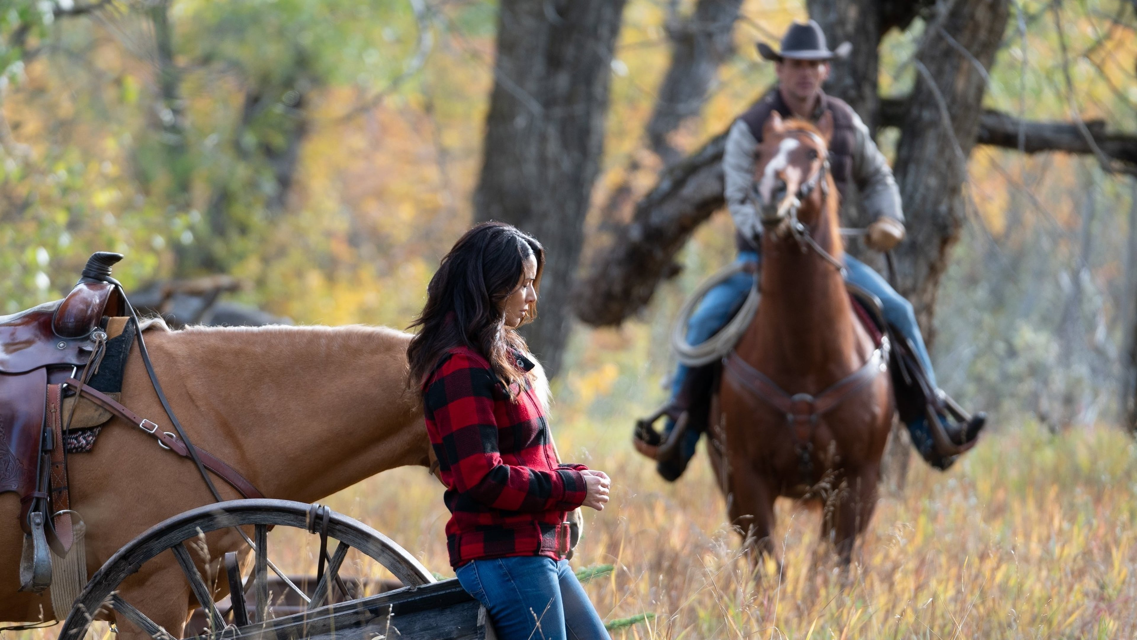 Heartland - Season 12 Episode 11 : Room to Grow