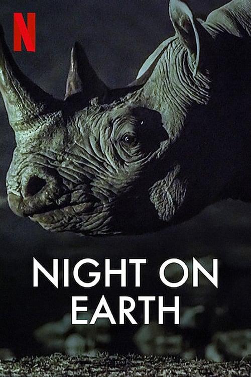 ღამე დედამიწაზე / Night on Earth