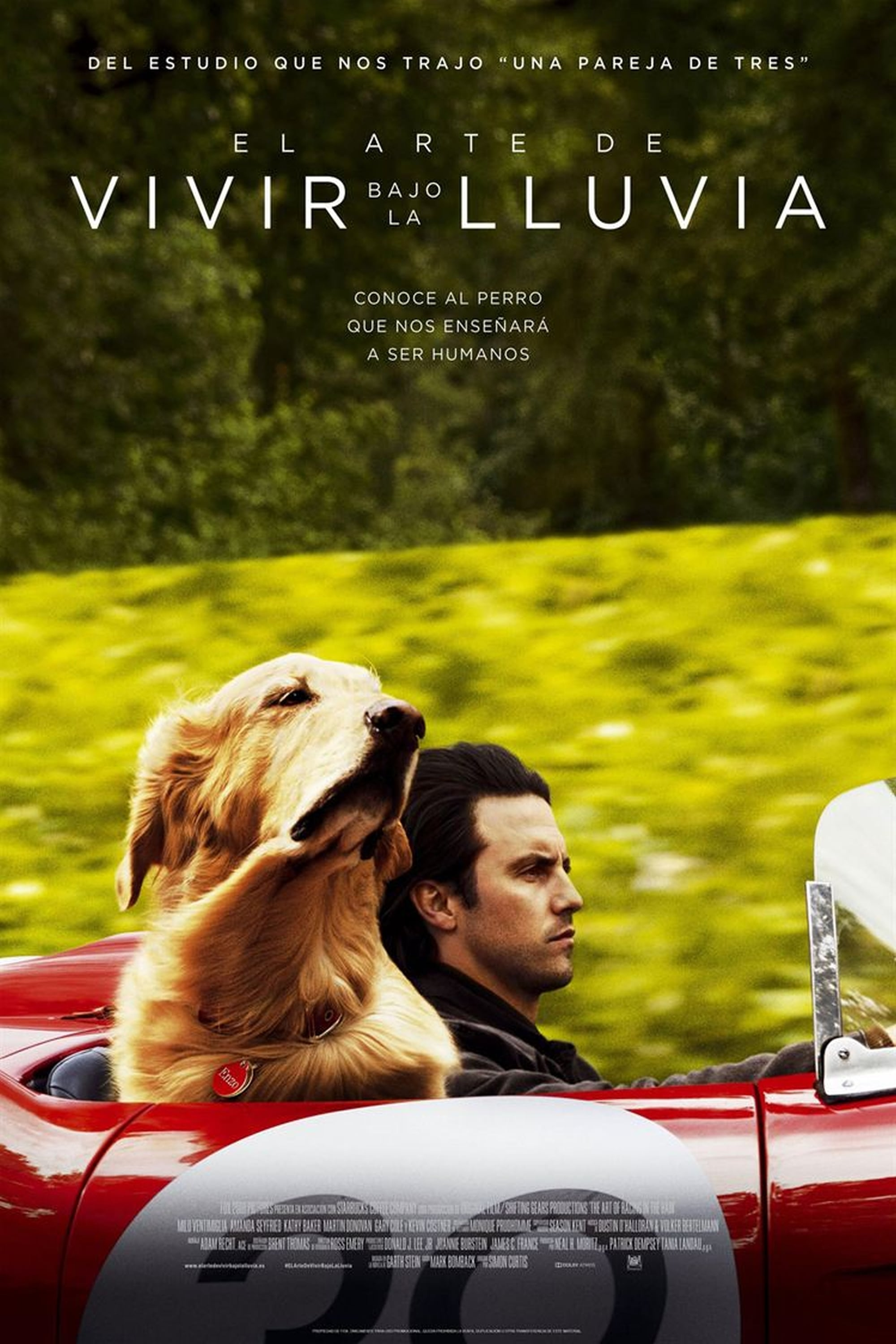 Poster and image movie Film The Art of Racing in the Rain 2019