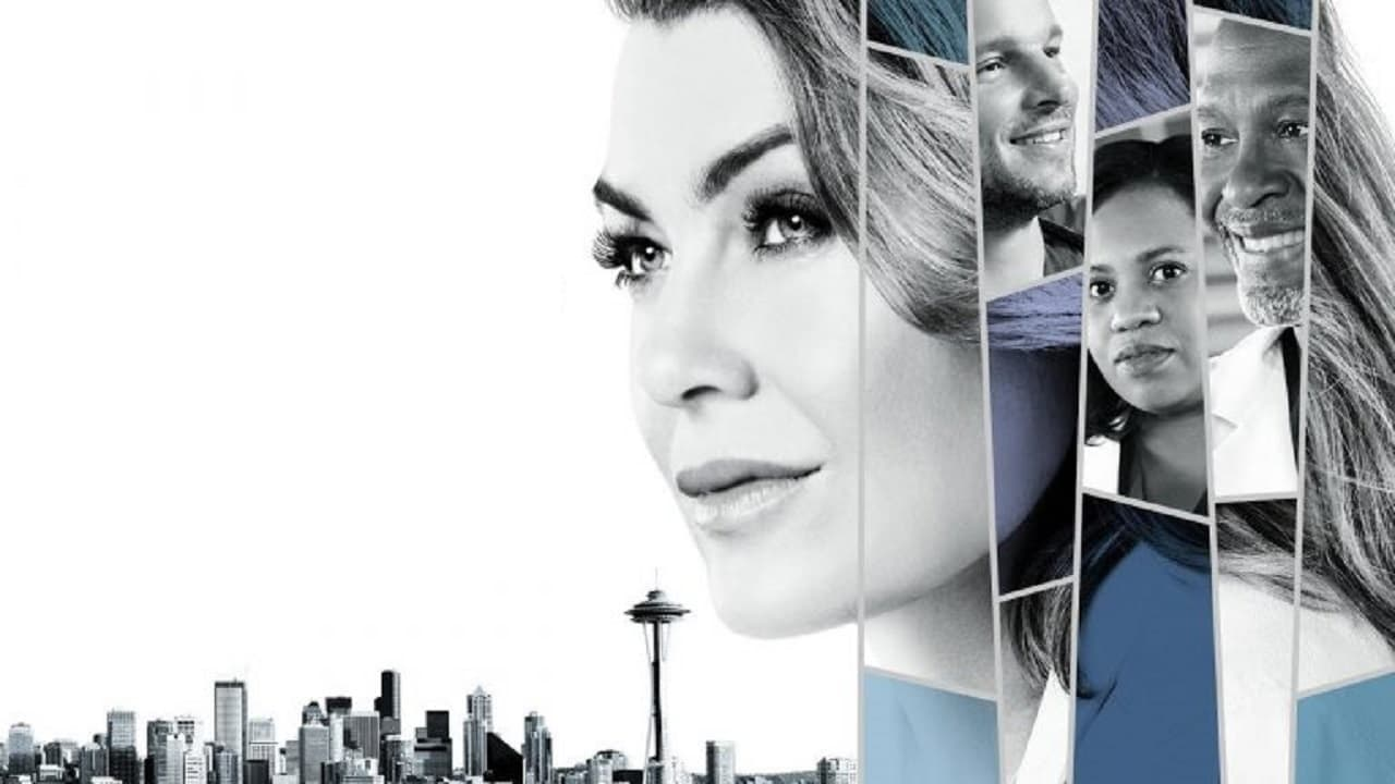 Grey's Anatomy Season 4 Full Series