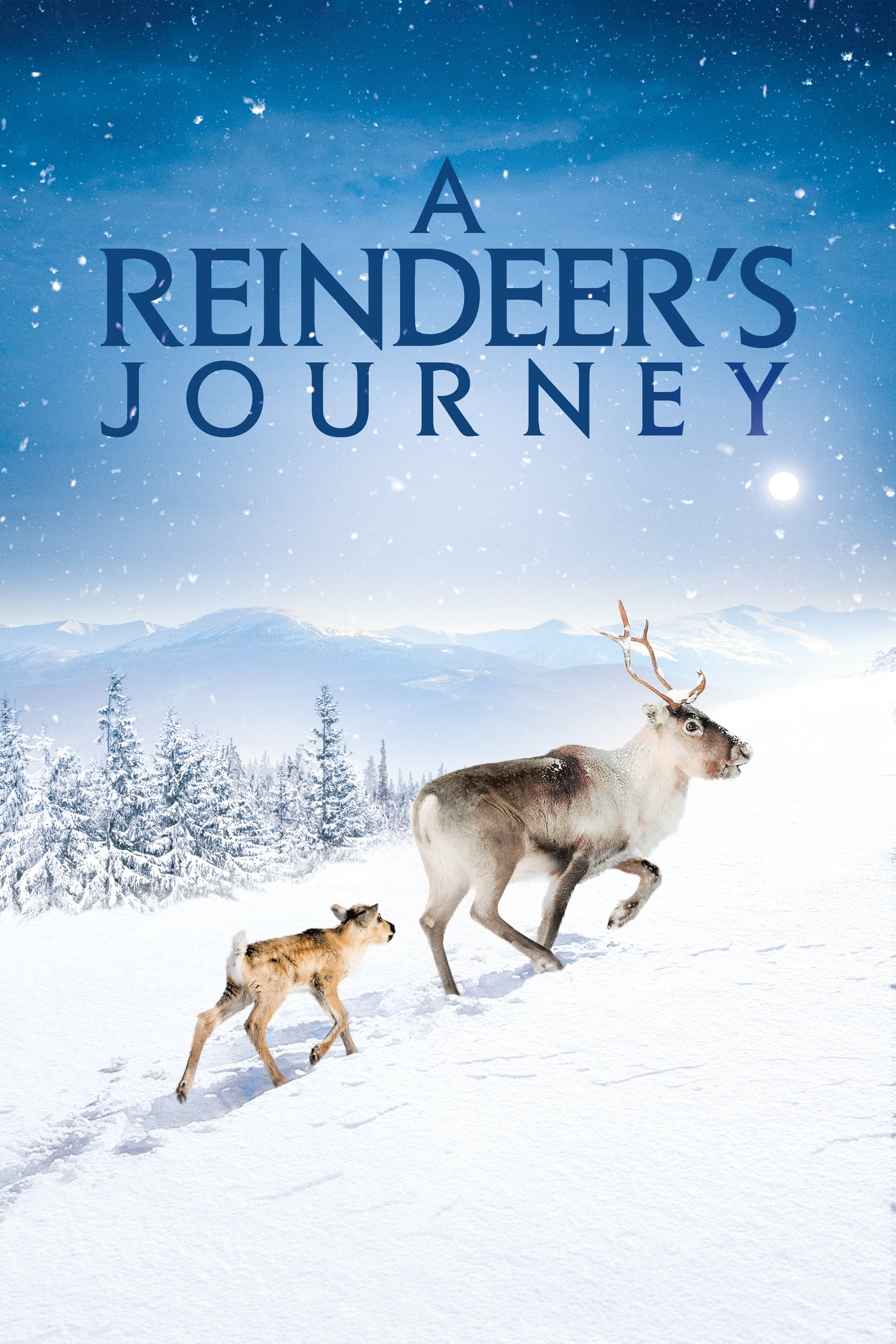 A Reindeer's Journey on FREECABLE TV