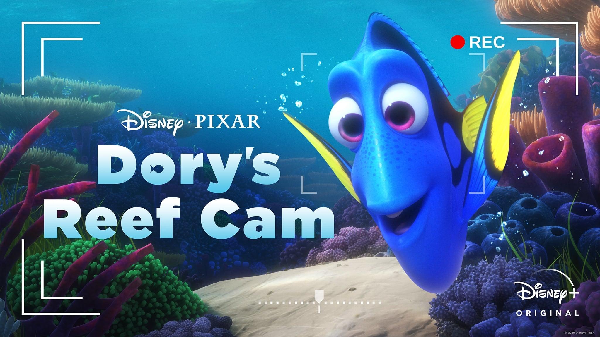 Камера Дори (2020)