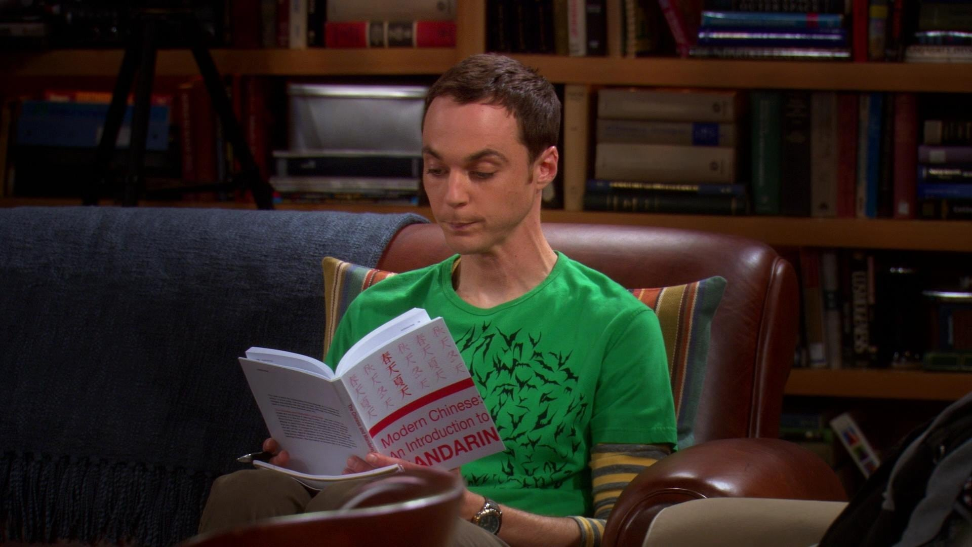 The Big Bang Theory Season 1 :Episode 17  The Tangerine Factor