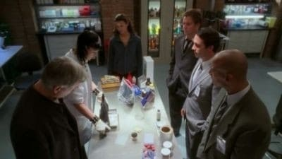 NCIS Season 4 :Episode 15  Friends and Lovers