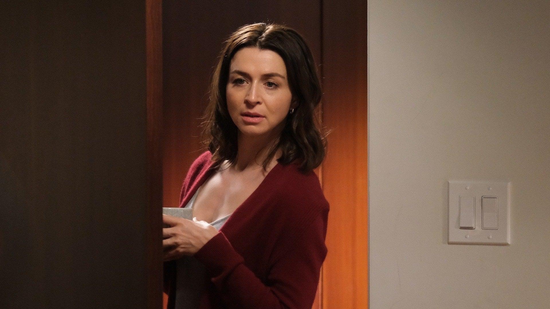 Grey's Anatomy Season 17 :Episode 9  In My Life