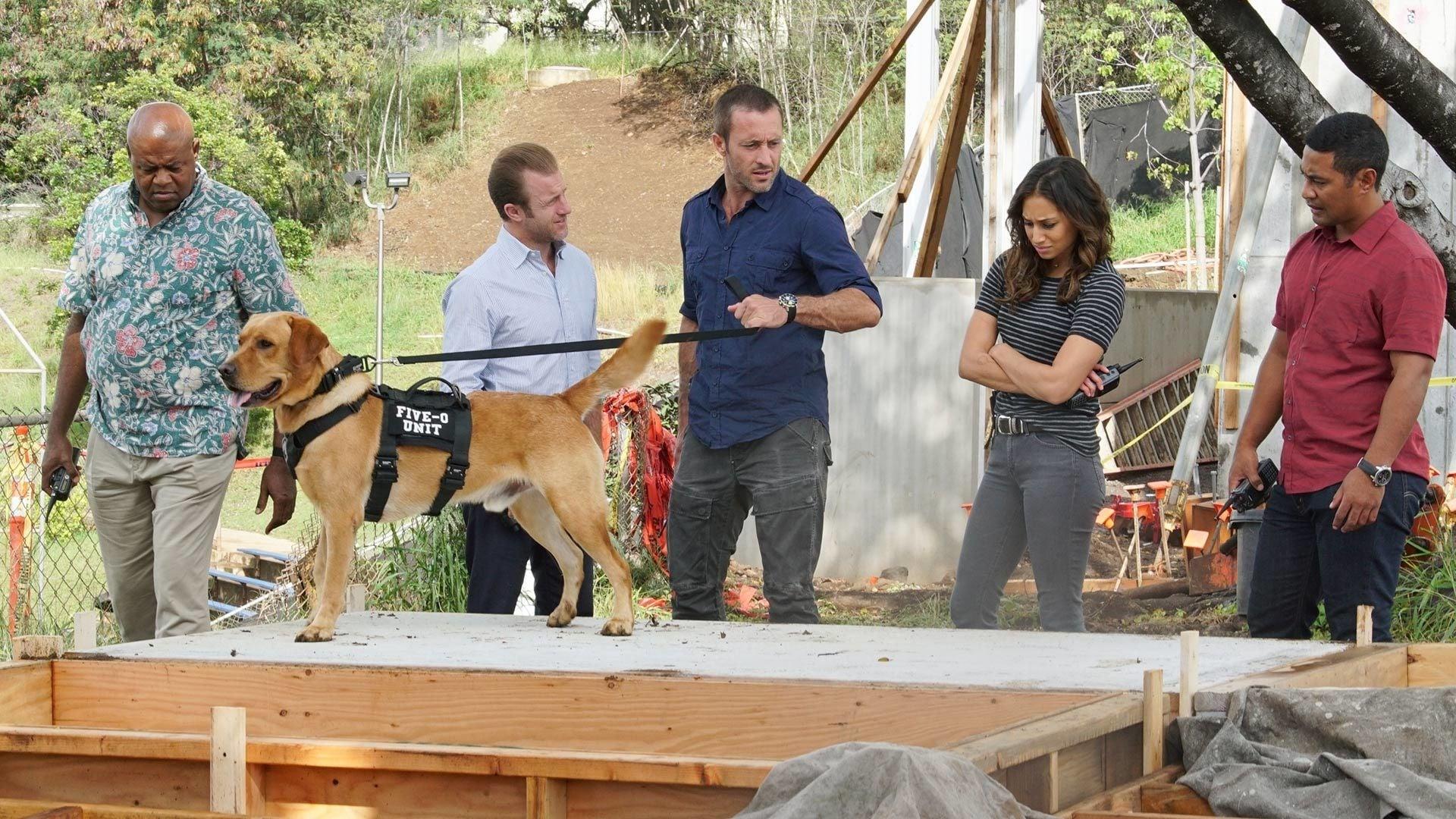 Hawaii Five-0 Season 8 :Episode 16  O na hoku o ka lani ka i 'ike ia Pae' (Only the Stars of Heaven Know Where Pae Is)
