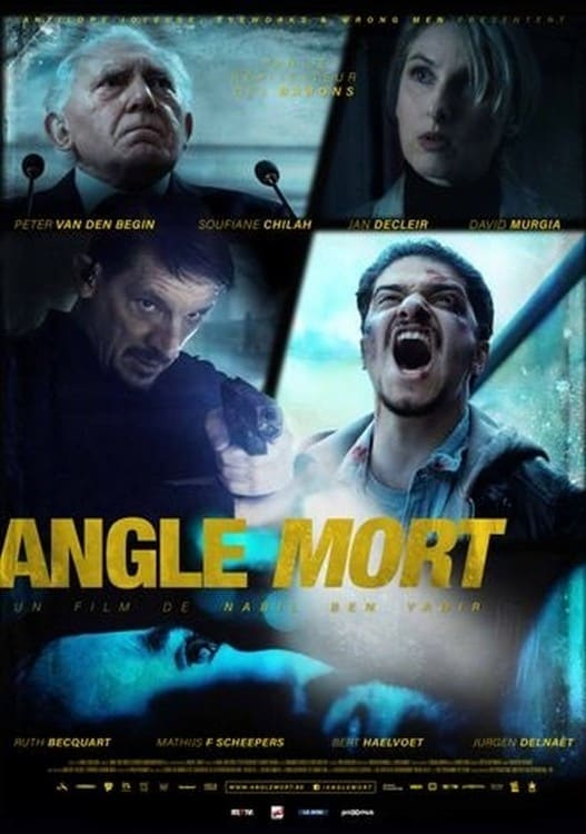 voir film Angle mort streaming