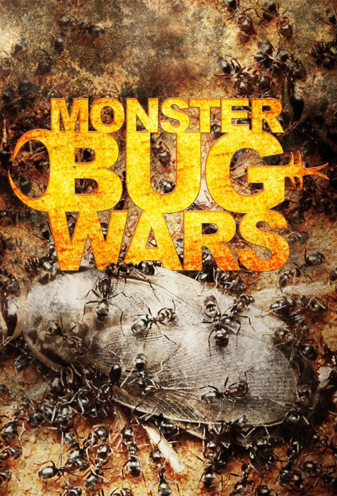 Monster Bug Wars (2011)