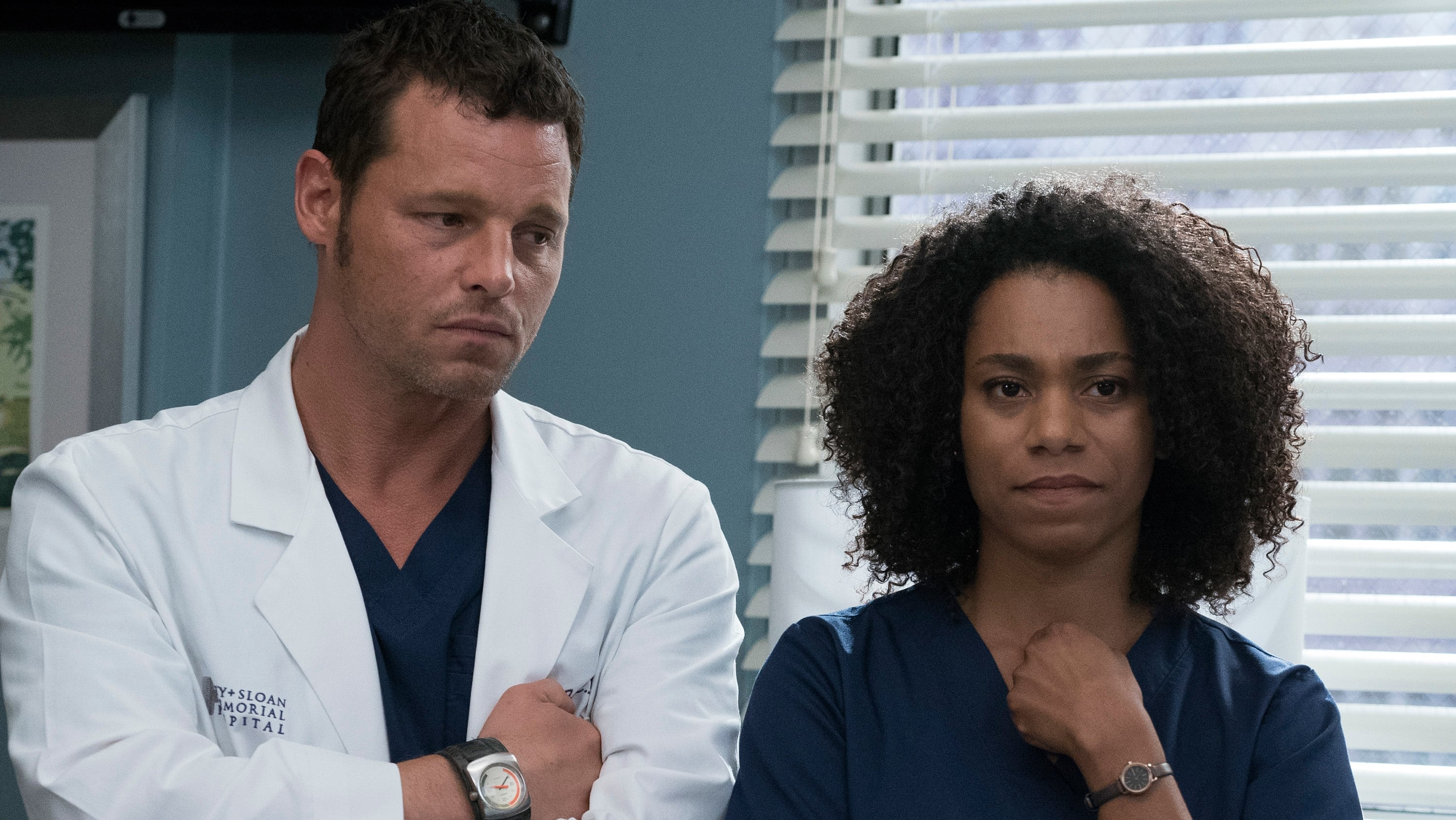 Grey's Anatomy Season 14 :Episode 4  Ain't That a Kick in the Head