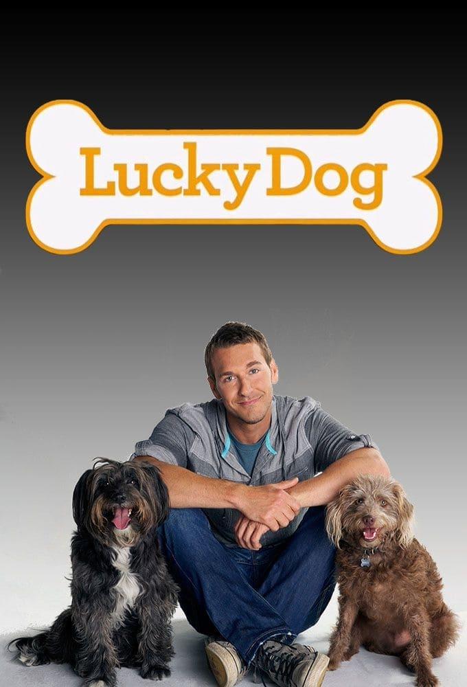 Lucky Dog (2013)