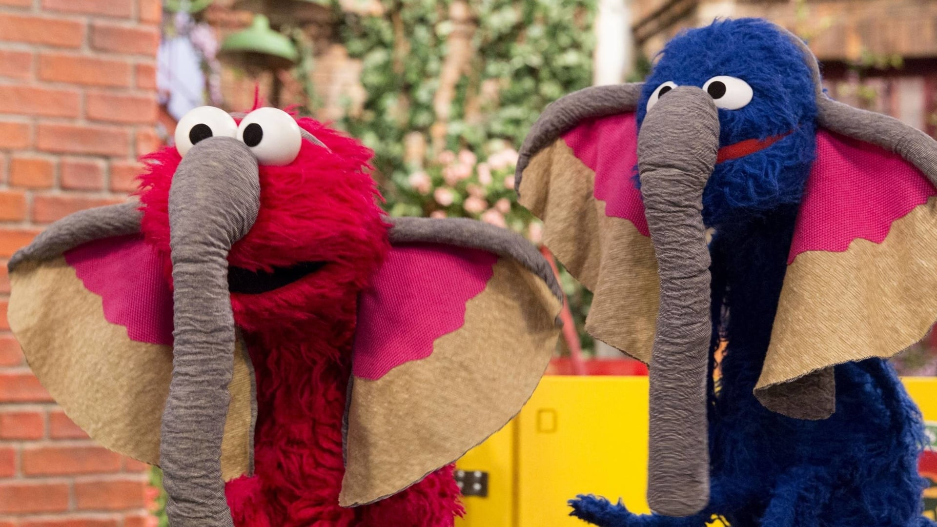 Sesame Street Season 46 :Episode 3  Grover's Street Safari