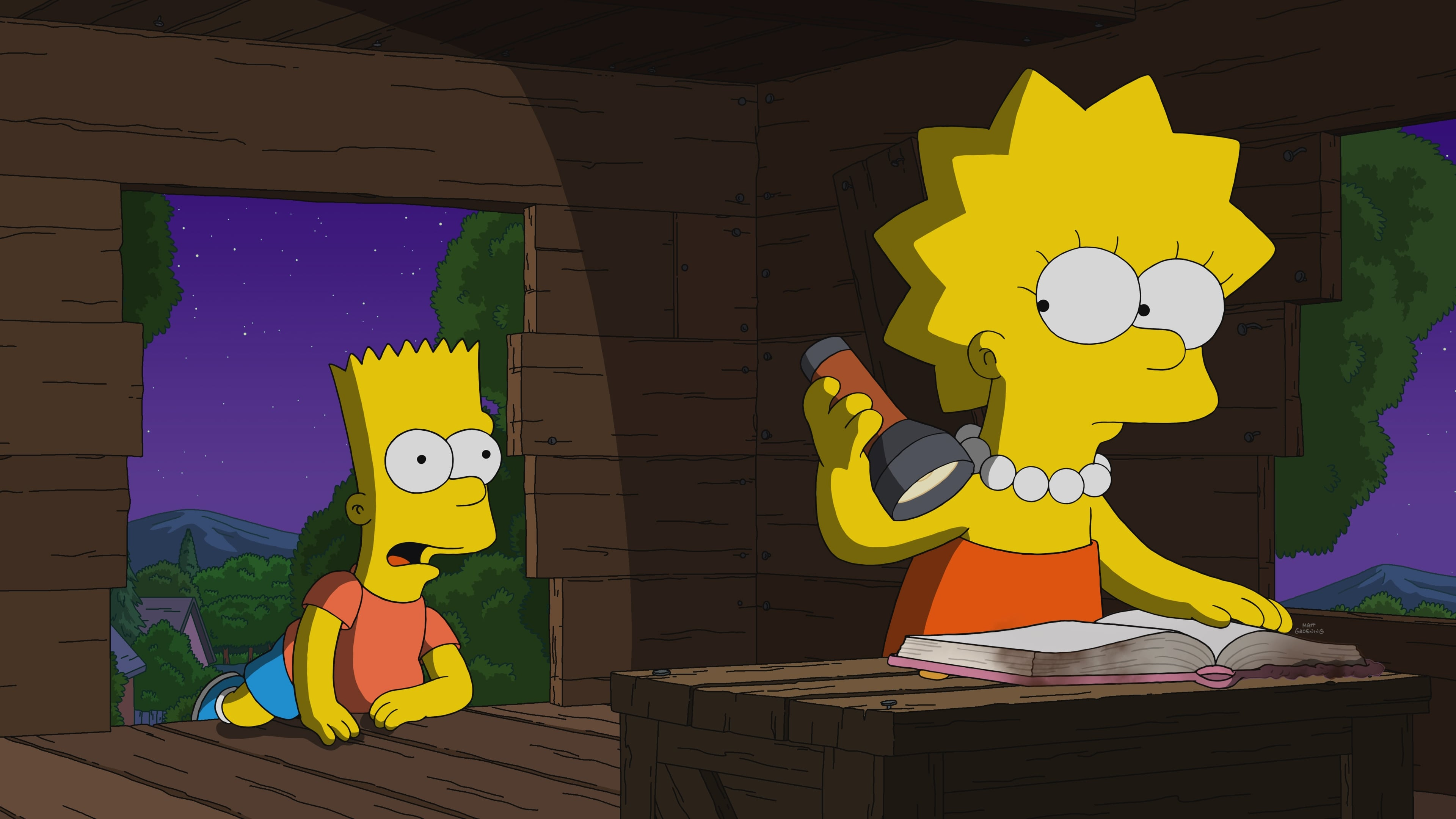 The Simpsons Season 32 :Episode 12  Diary Queen