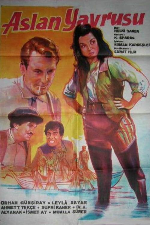 Ver Aslan Yavrusu Online HD Español (1960)