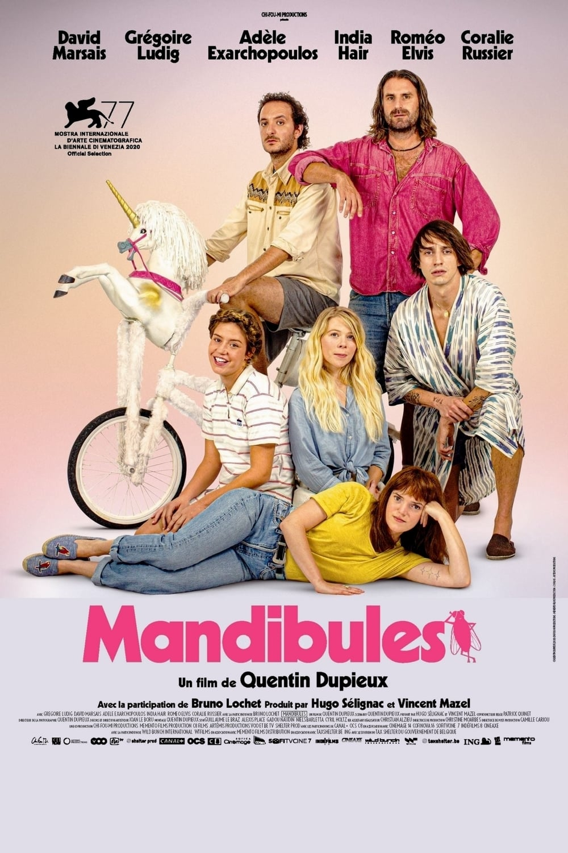 Voir Mandibules (2020) Français Streaming 1080p