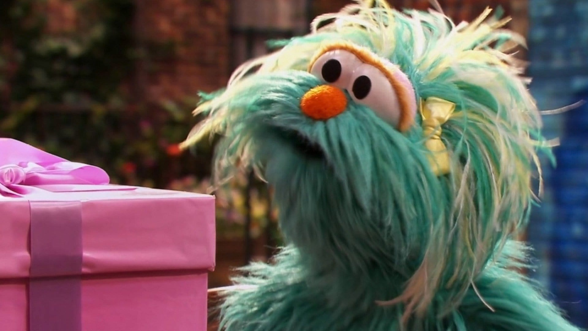 Sesame Street Season 45 :Episode 13  Waiting for the Present