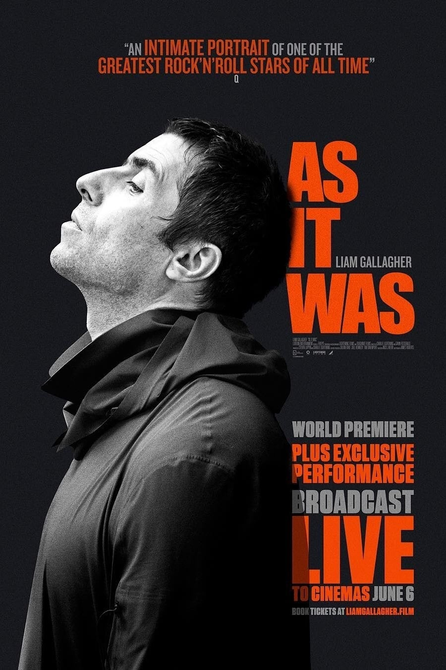 watch Liam Gallagher: As It Was 2019 online free