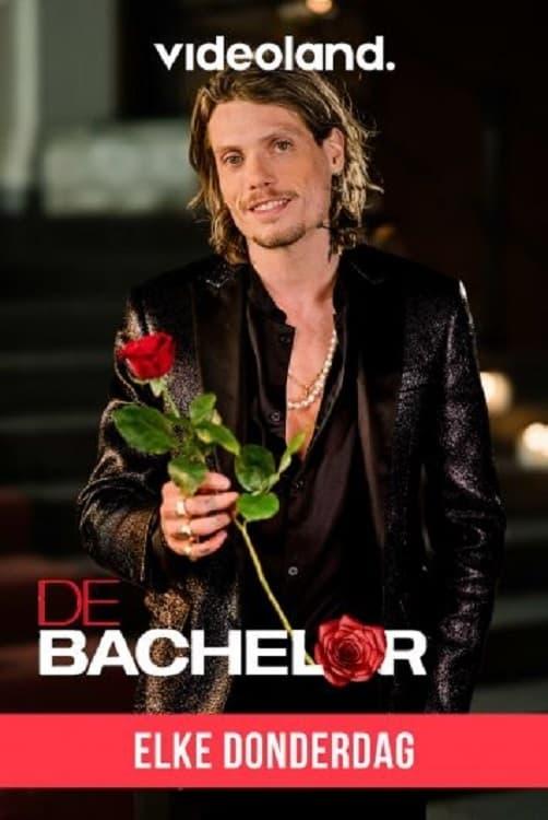 De Bachelor (NL)