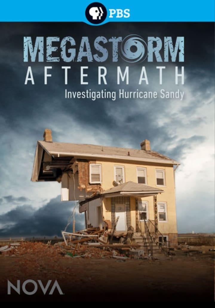 Ver Megastorm Aftermath Online HD Español ()