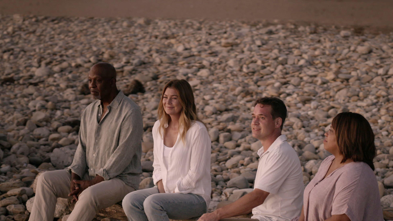 Grey's Anatomy Season 17 :Episode 4  You'll Never Walk Alone