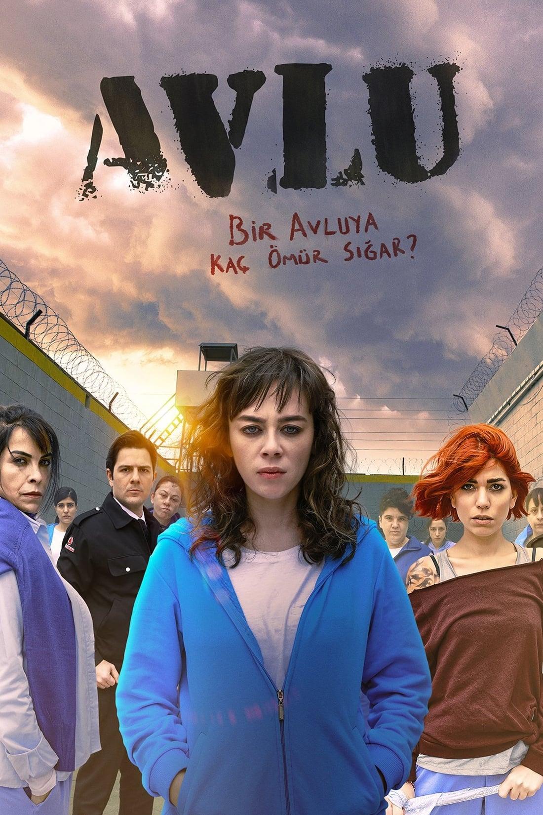 Avlu Poster