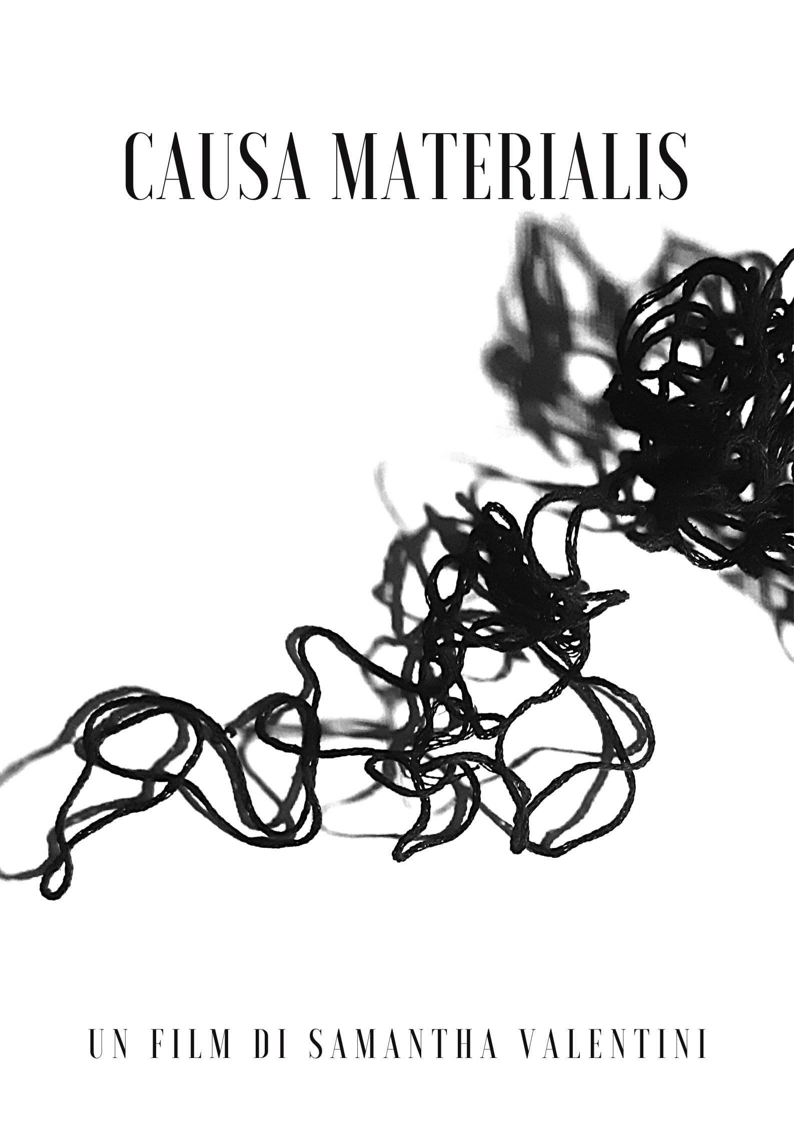 Causa Materialis (2021)