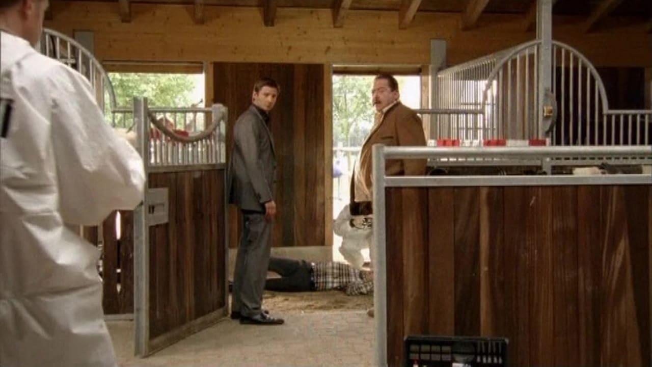 Die Rosenheim-Cops Season 9 :Episode 23  Ritt in den Tod
