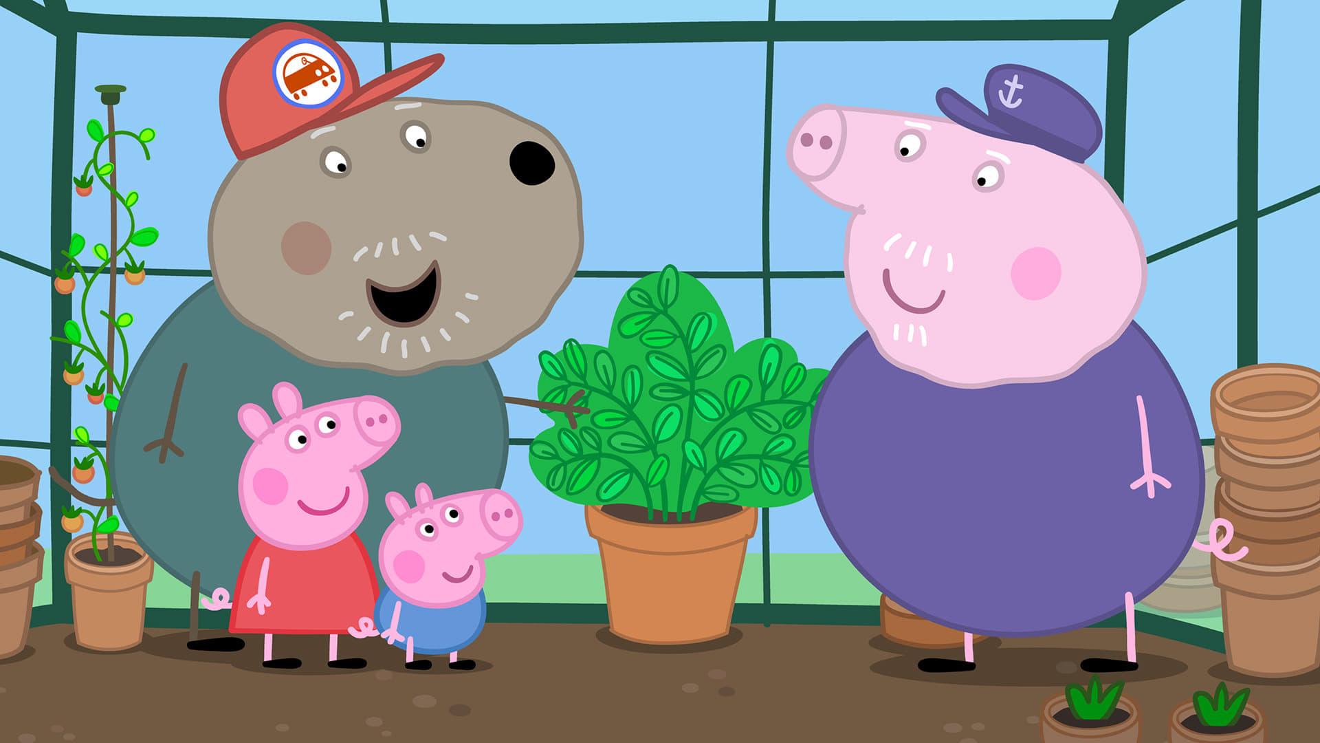 Peppa Pig Season 5 :Episode 12  Grandpa Pig's Greenhouse