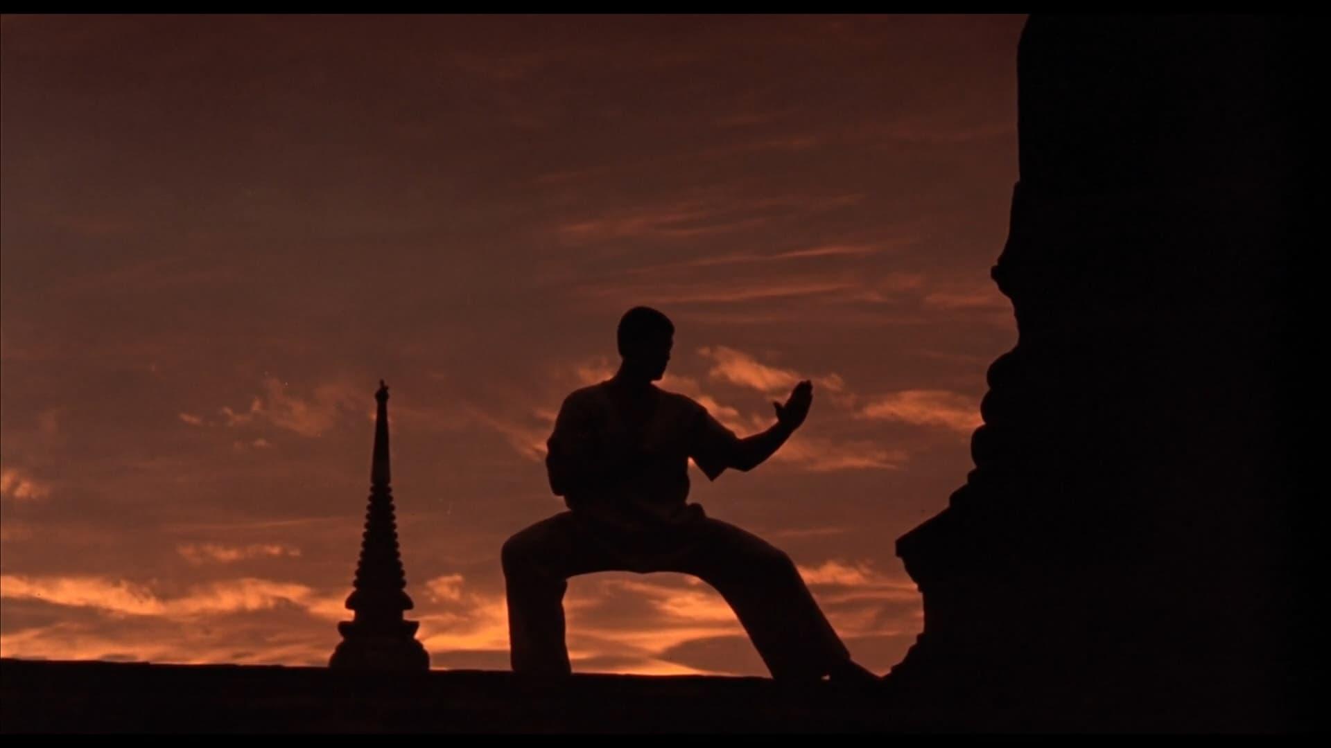 Kickboxer (1989) • peliculas.film-cine.com