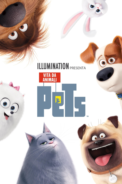 Pets Film Stream