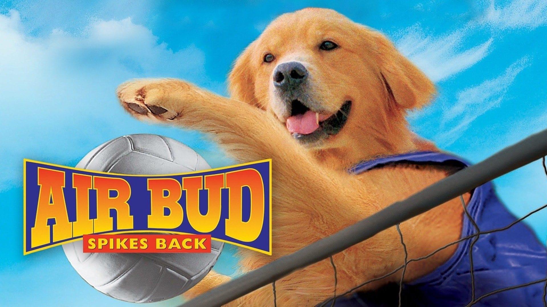 Air Bud: Spikes Back Movie