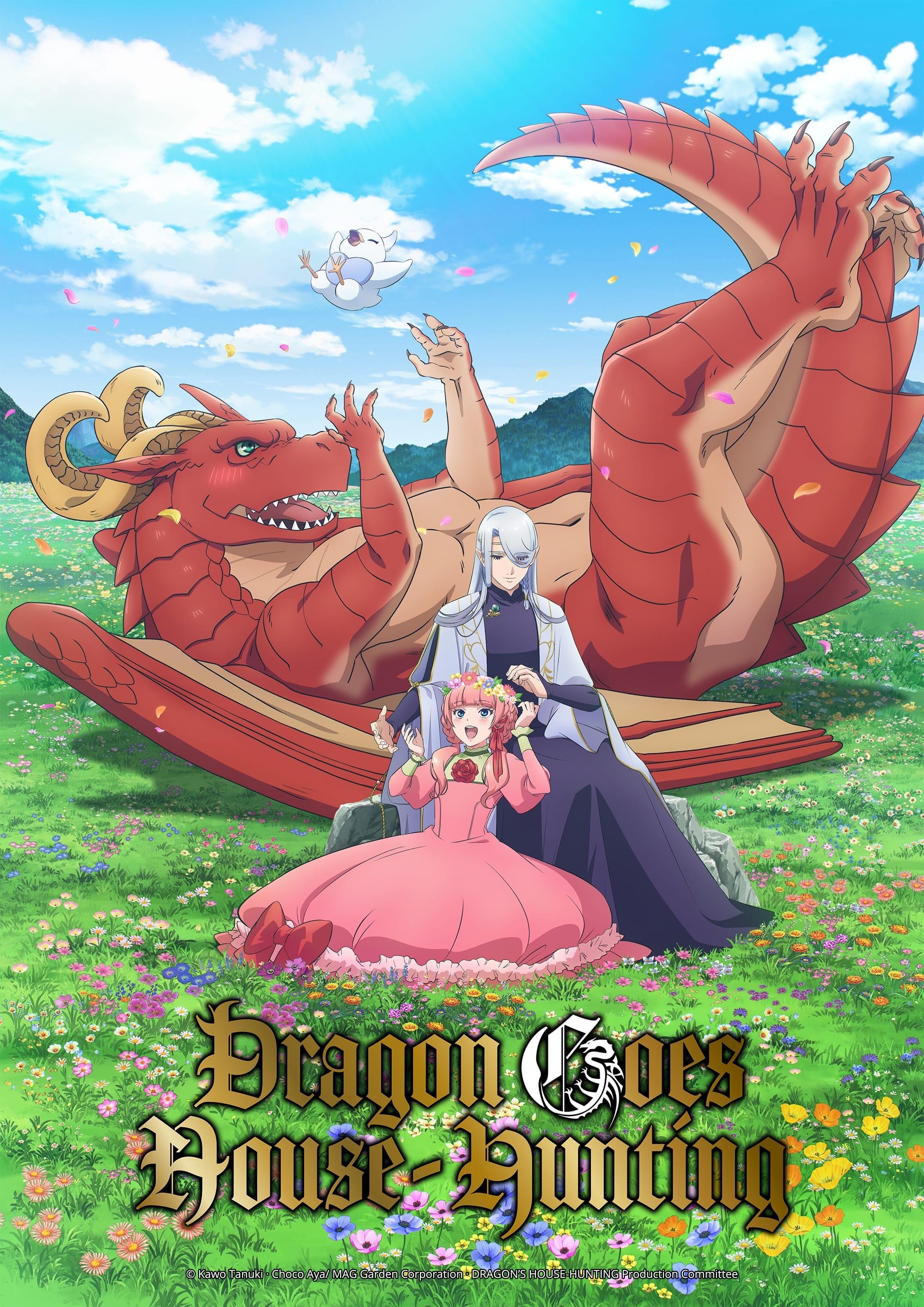 ドラゴン、家を買う。 TV Shows About Fantasy World