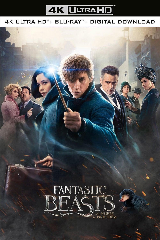 Fantastic Beasts 2 Stream