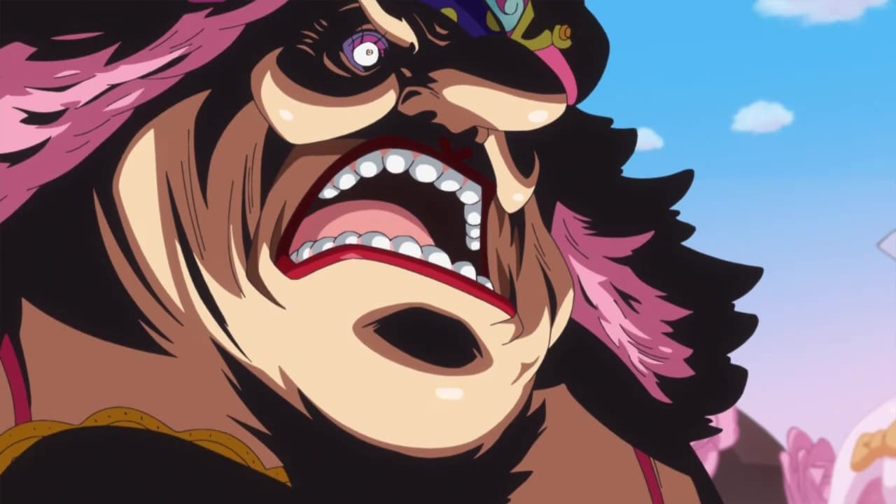 One Piece Season 19 :Episode 833  Returning the Sake Cup! The Manly Jimbei Pays His Debt!