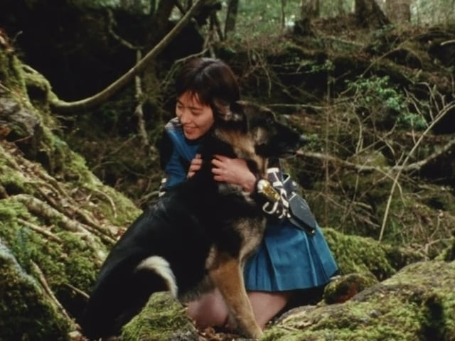 Super Sentai Season 19 :Episode 13  Mirage! The Dog of the Gods