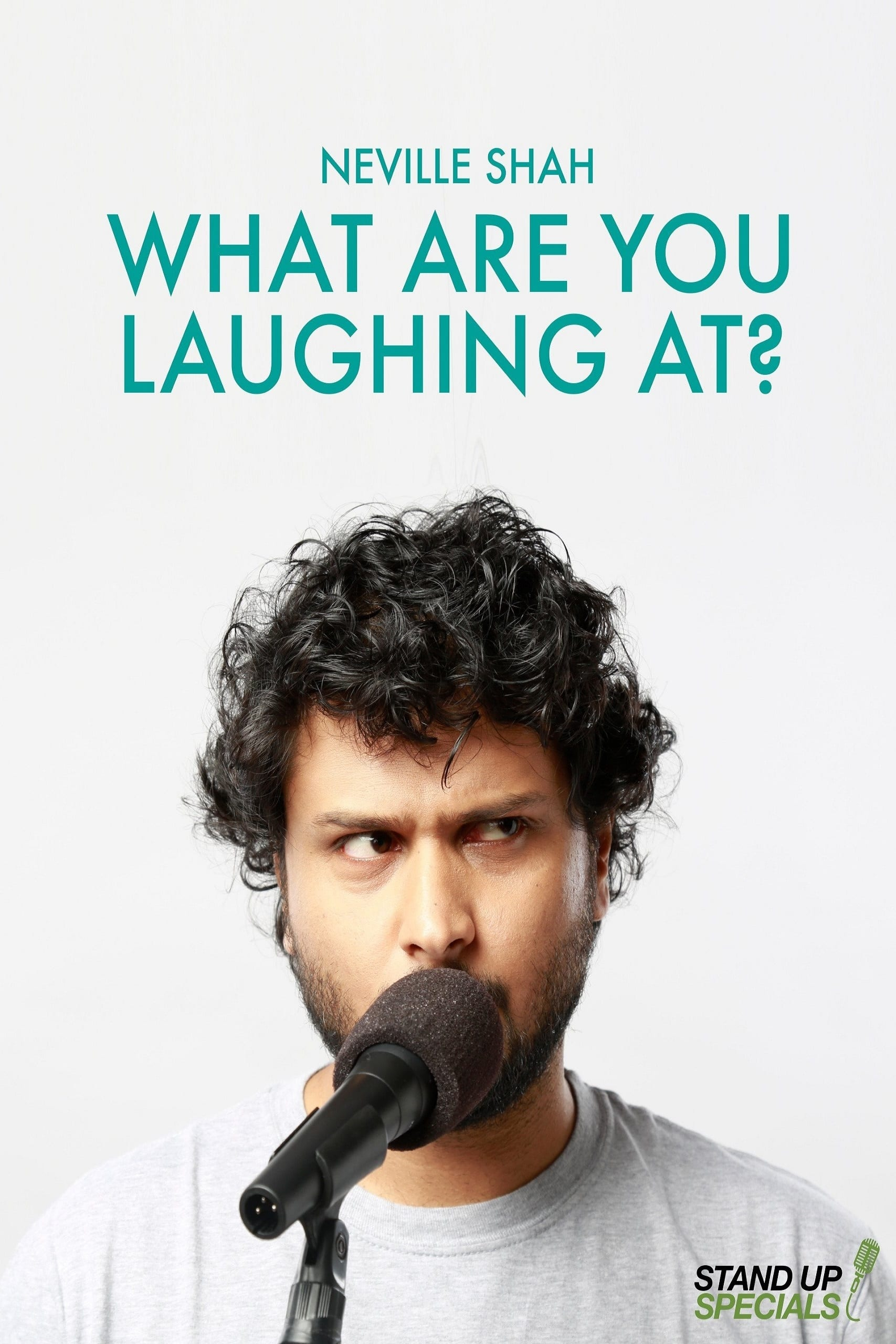 Ver What Are You Laughing at by Neville Shah Online HD Español ()