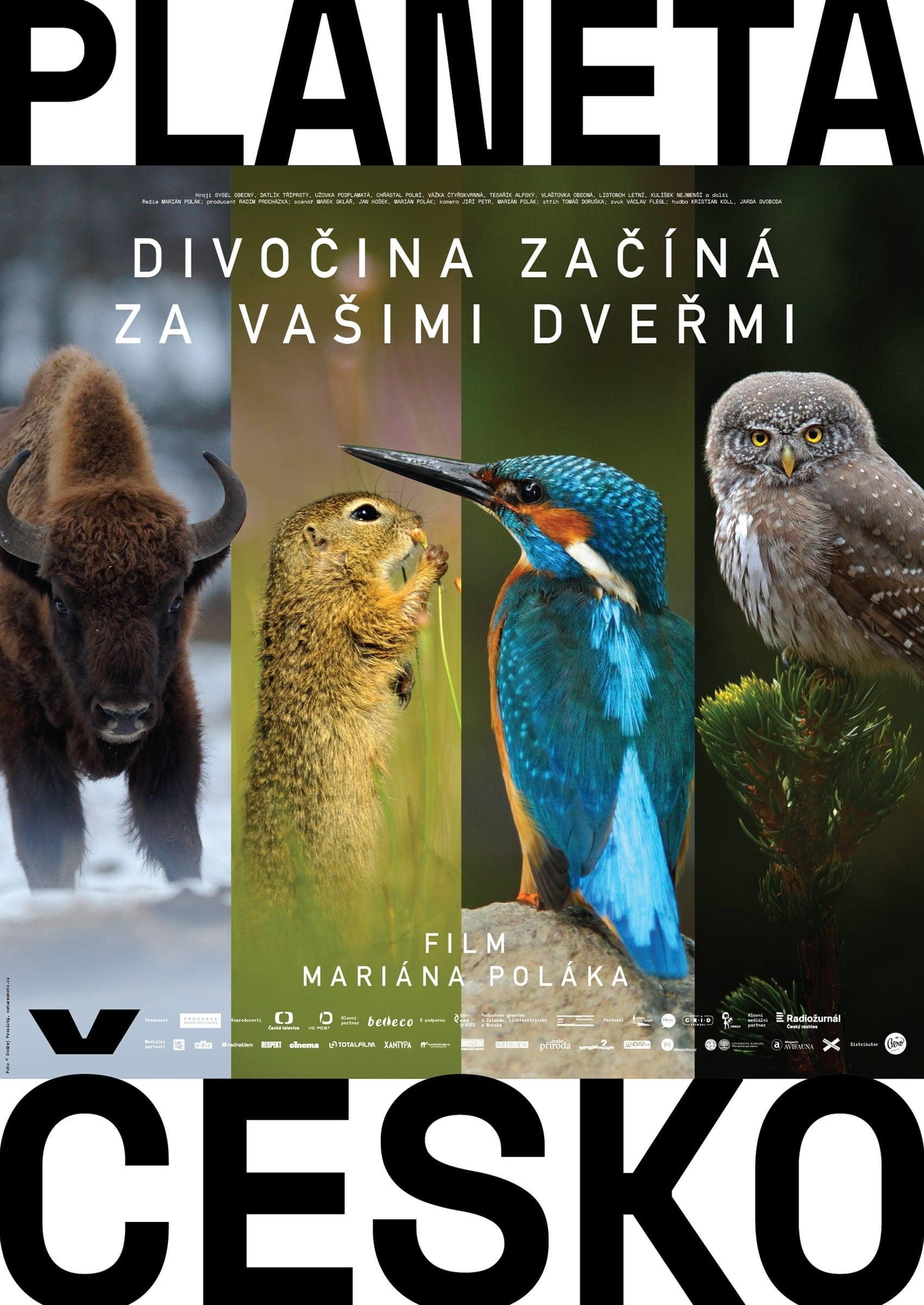 Planeta Česko (2018)