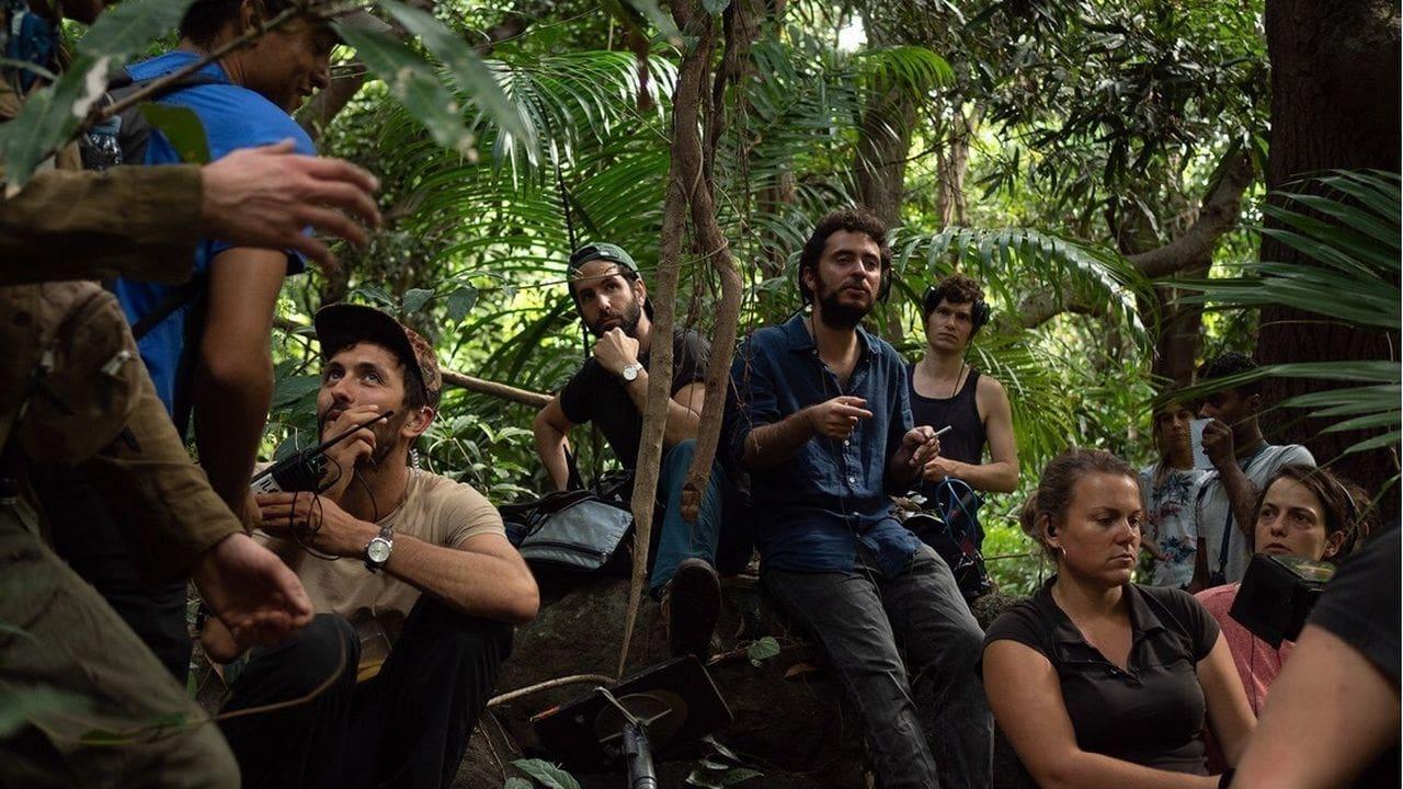Terrible jungle (2020)
