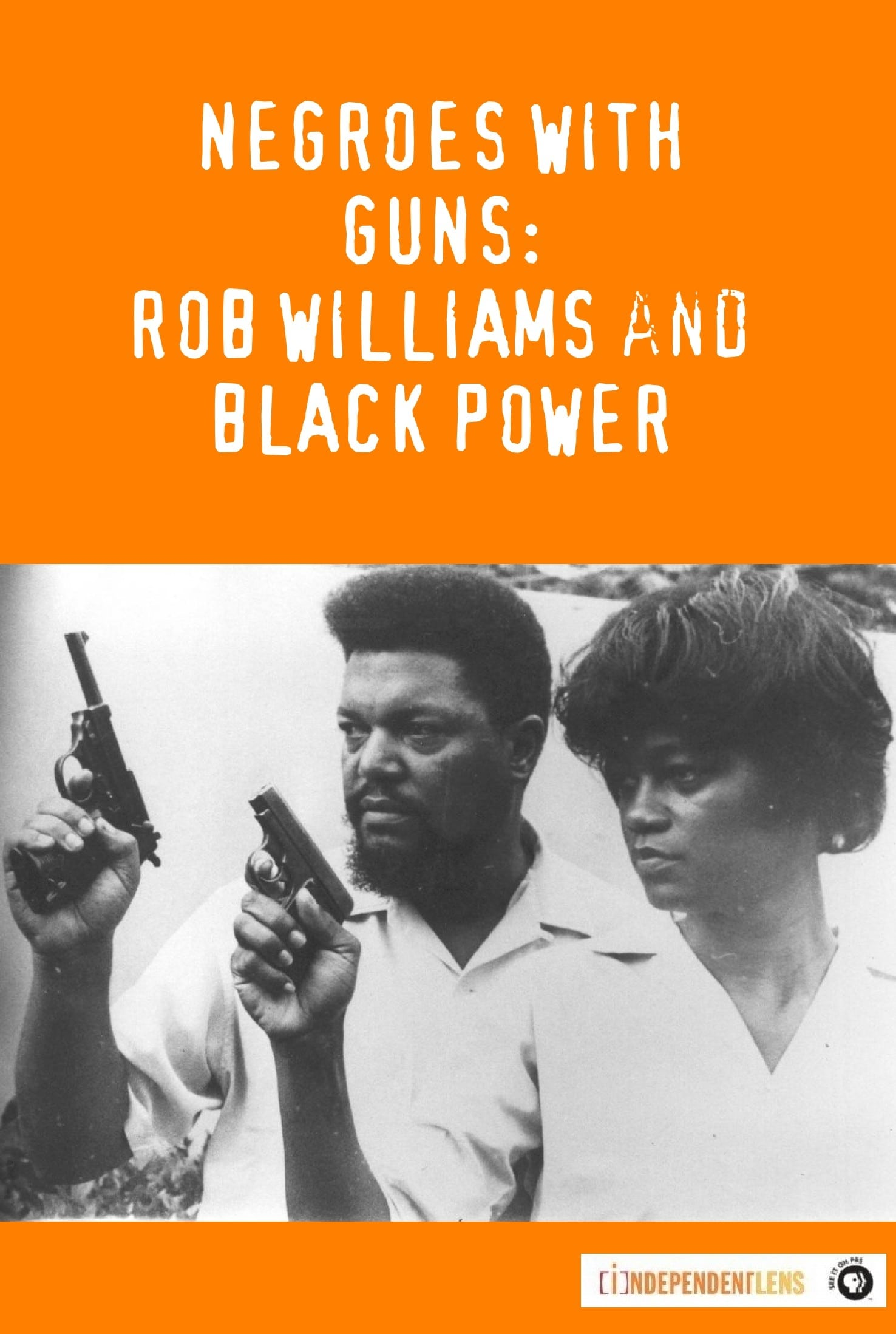 Ver Negroes with Guns: Rob Williams and Black Power Online HD Español (2004)