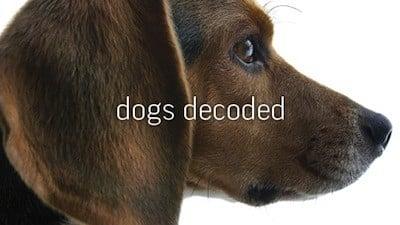 NOVA Season 38 :Episode 4  Dogs Decoded