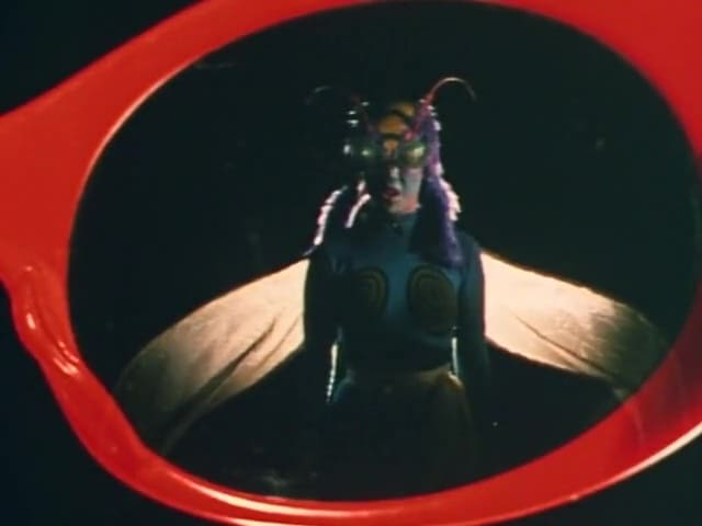 Kamen Rider Season 1 :Episode 8  Strangeness! Bee Woman