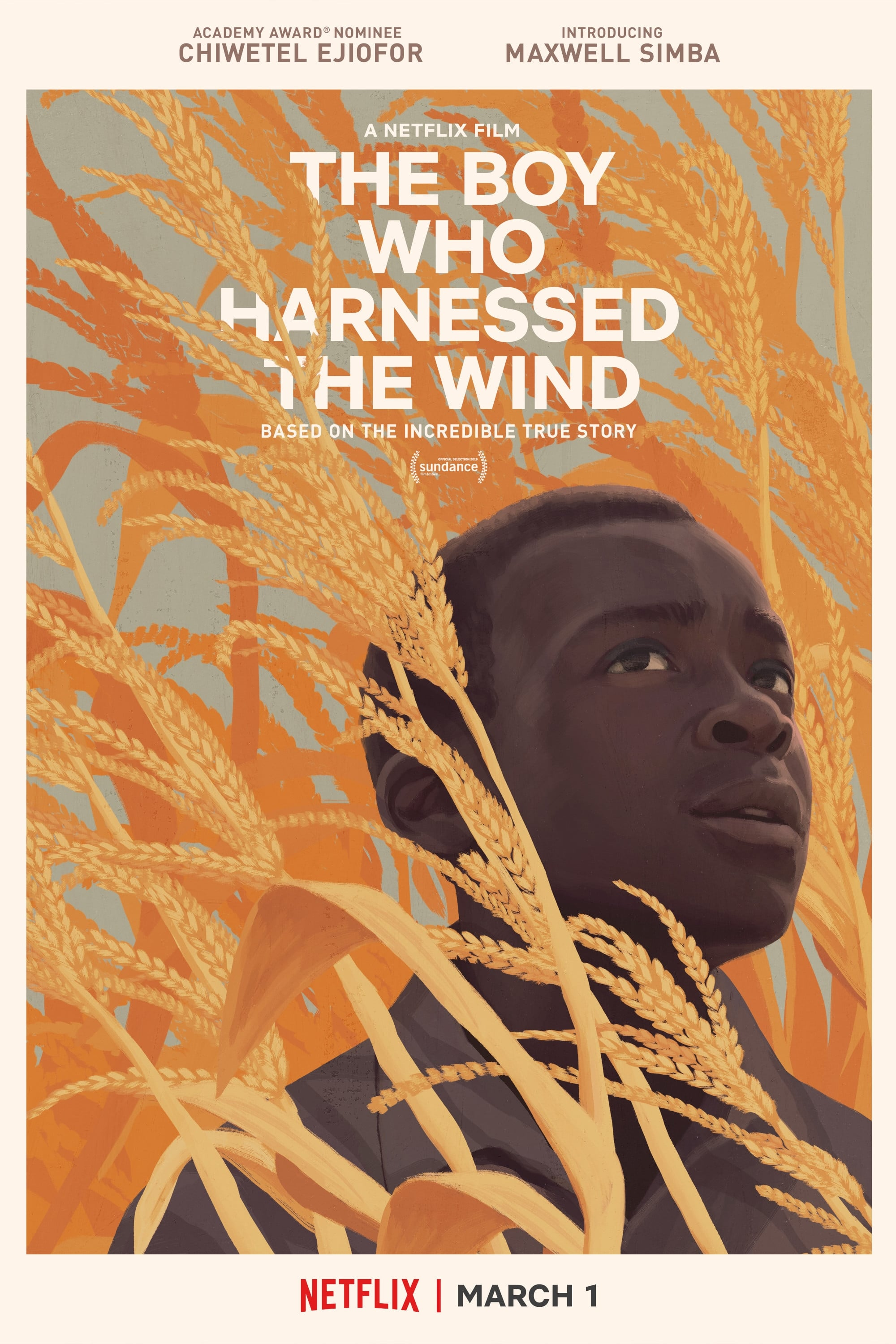 The Boy Who Harnessed the Wind 2019 Türkçe indir