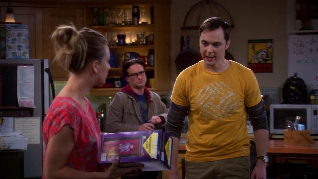 The Big Bang Theory Season 5 :Episode 20  The Transporter Malfunction