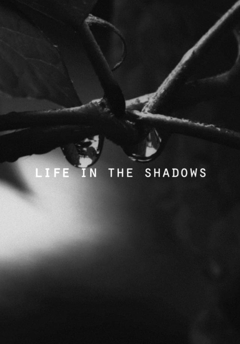 Life in the Shadows (2018)
