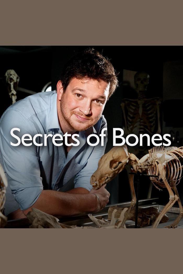 Secrets Of Bones (2014)
