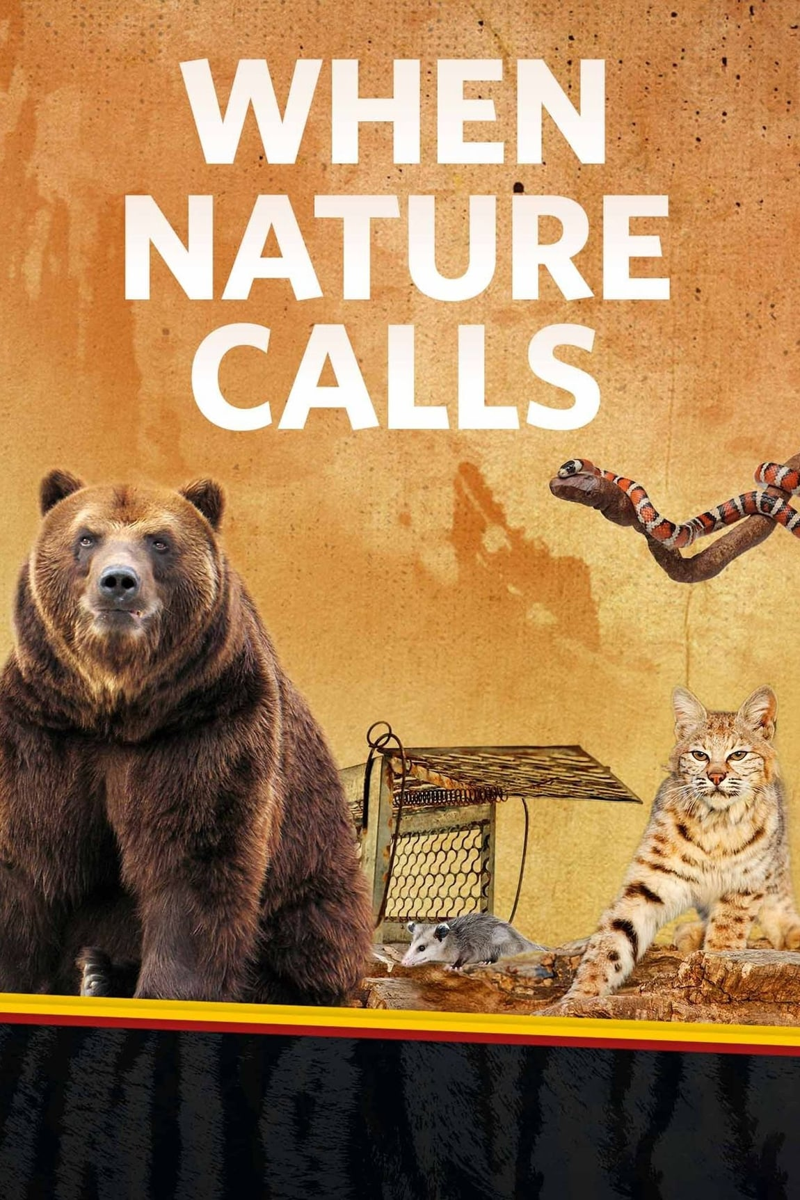When Nature Calls TV Shows About Wildlife