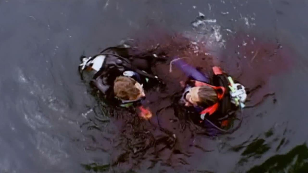 В открити води (2004)