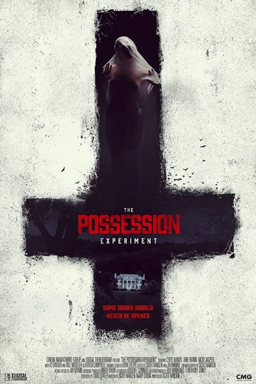 Póster The Possession Experiment