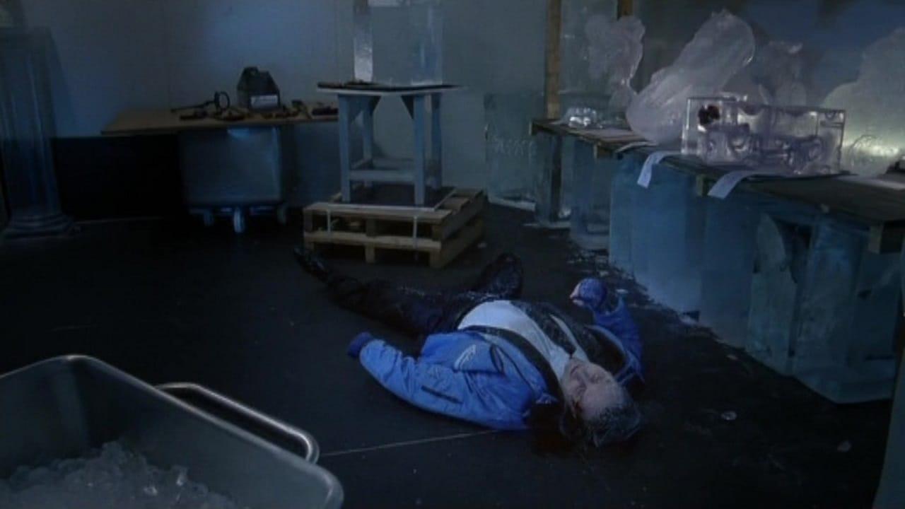 Die Rosenheim-Cops Season 12 :Episode 9  Frostiger Tod