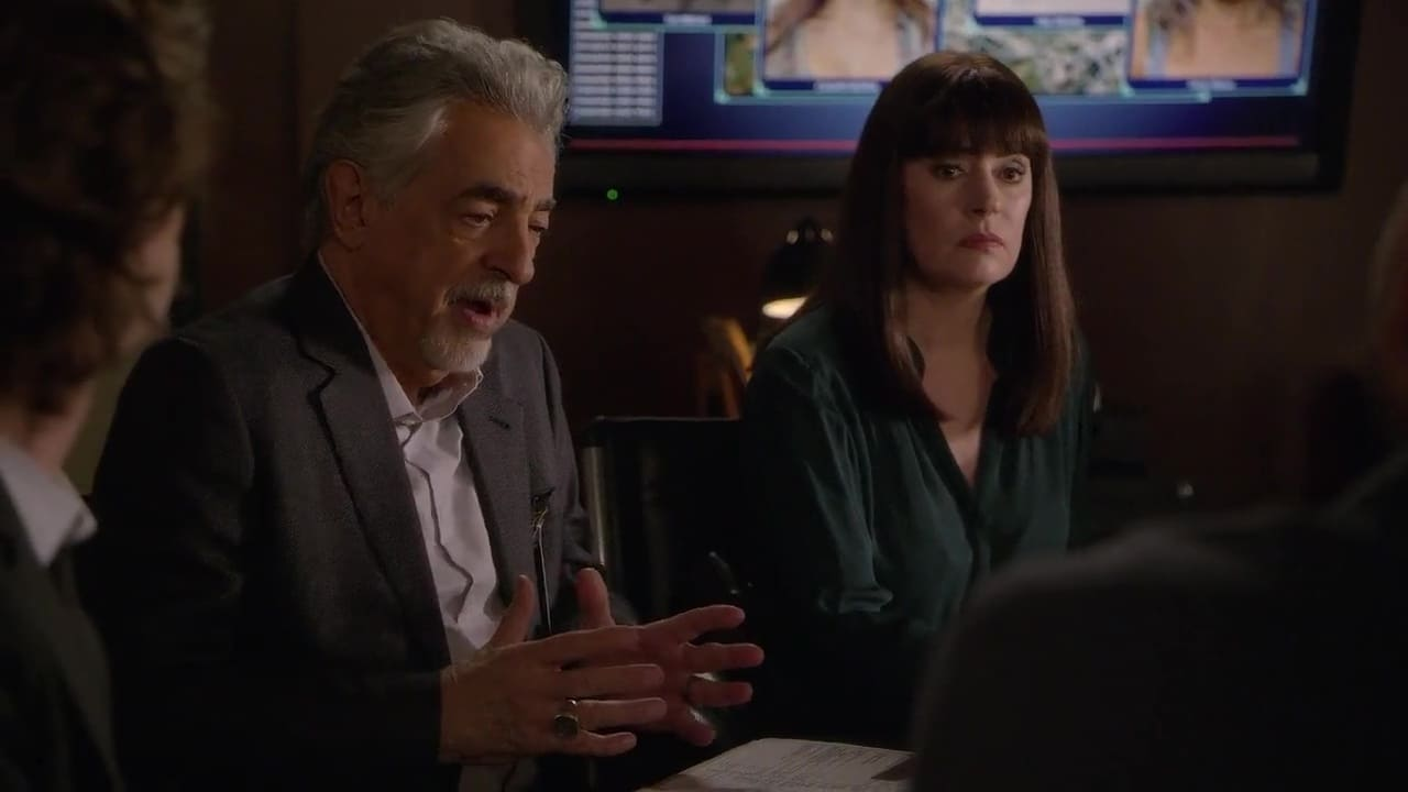 Criminal Minds Season 15 :Episode 8  Family Tree