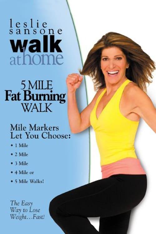 Walk at Home: 5 Mile Fat Burning Walk (2008)